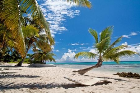 bahamas: Een mooi beeld van Caribbean Paradise - Natuur