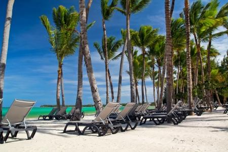 Chaise-longues on caribbean sea beach, Dominican Republic Stock Photo - 14710647