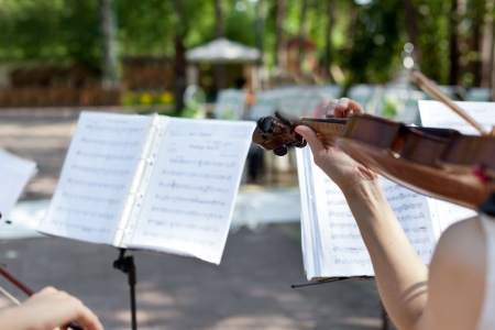march band: Violinist on wedding ceremony, closeup