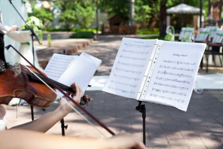 woman violin: Violinist on wedding ceremony, playing Wedding March Editorial