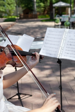 Violinist on wedding ceremony, playing Wedding March
