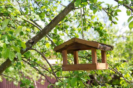 Birdhouse on apple tree in the garden photo