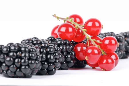 Blackberry and red currants isolated on white background photo