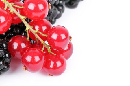 Blackberry and red currants isolated on white  photo