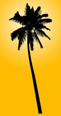 Silhouette of coconut palm isolated on yellow photo