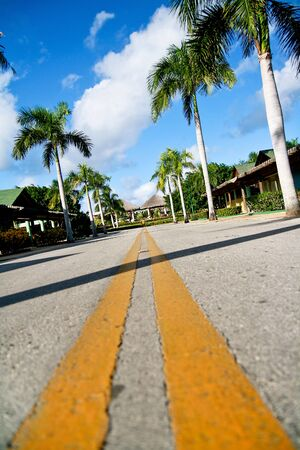 Yellow dividing lines on road on tropic street  photo