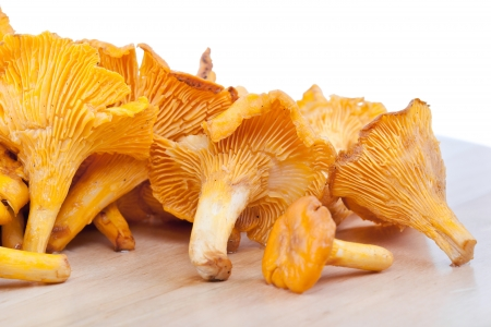 Chanterelles on wooden table closeup  photo
