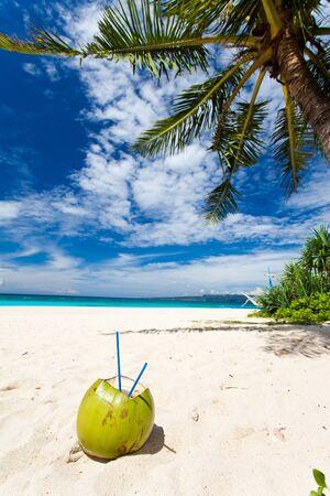 Coconut on white sand beach under palm tree Stock Photo - 16419059