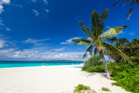 Tropical scene, Philippines, Puka Shell beach