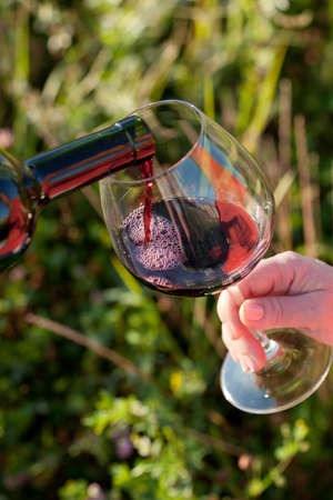 Wine pouring from bottle, outdoor picnic photo
