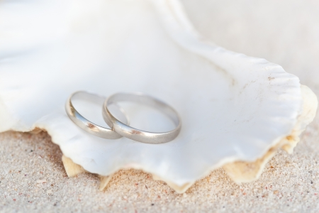 Celebration Valentine s day on beach, rings on shell Stock Photo - 17682171