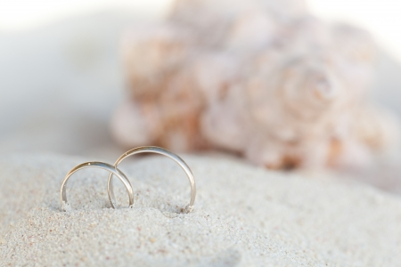 proposal of marriage: Celebration Valentines day on beach, rings on shell Stock Photo