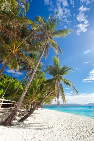 Idyllic tropical scene, Philippines, Boracay island photo
