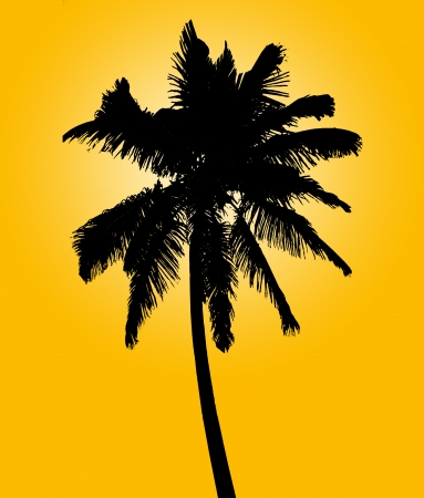 Silhouette of coconut palm isolated on yellow, illustration illustration
