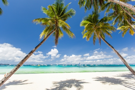 Tropical beach with beautiful palms and white sand, Philippines, Boracay Island Stock Photo