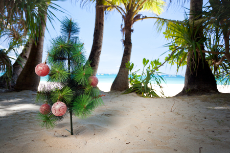 Christmas tree on beach. New year concept.