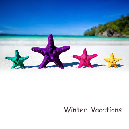 Color starfishes on sandy beach photo
