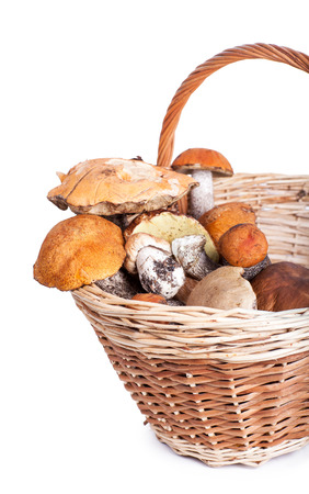 Basket with different mushrooms from forest, closeup on white  photo