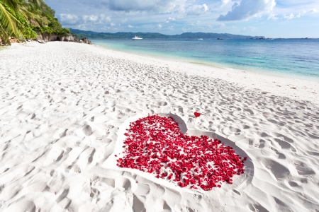 Heart of roses petals on tropical sandy beach. Nobody. Love concept