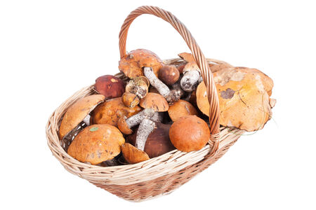 Basket with white mushrooms, orange and brown cap boletuses, closeup on white background    photo