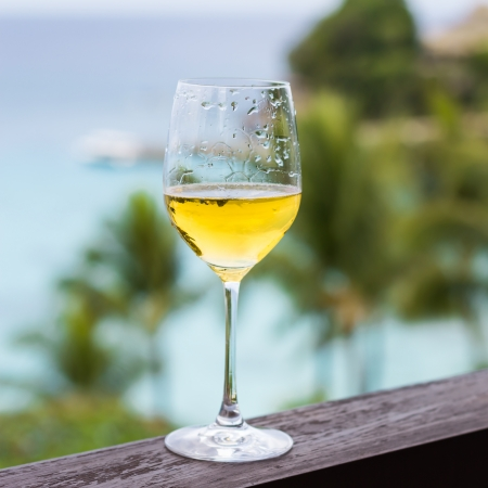 Glass of wine on balcony rail, Tropical view photo