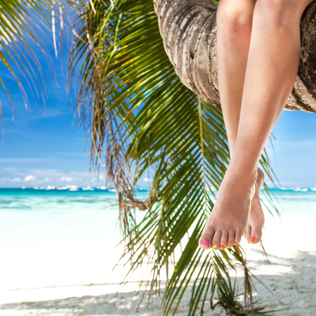 Womans legs closeup, sitting on palm photo