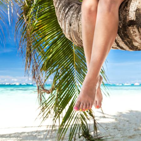 Womans legs closeup, sitting on palm tree photo