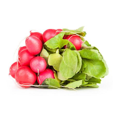 fascicle: Pile of garden radish, closeup on white background