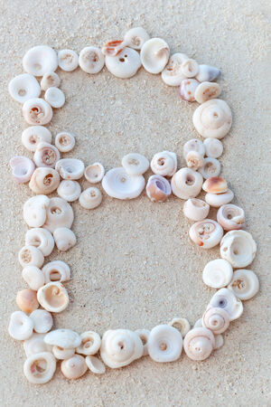 Alphabet shell letters on sandy beach, closeup photo