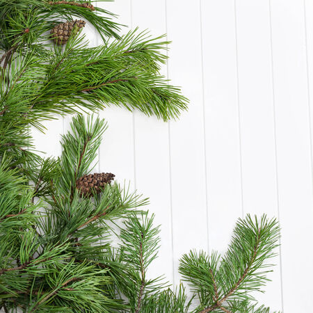 Decorated pine branches at left side with cones on white wooden table,  free space photo