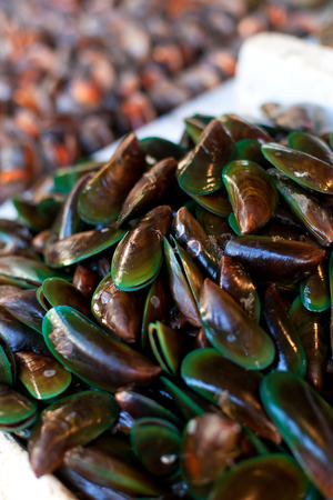 local supply: Oysters, mussels and scallops on asian market Stock Photo