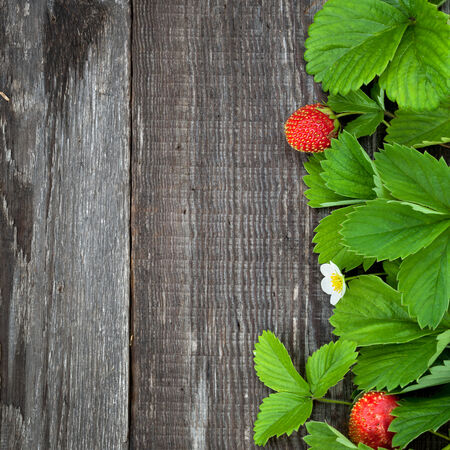 Background with ripe strawberry leaf on old wooden board photo