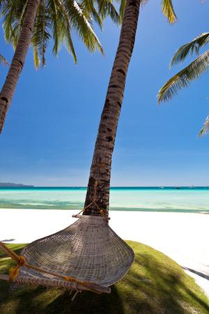 Empty hammock near coconut palms at white beach photo
