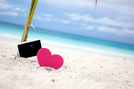 recollections: Empty photo card with heart on sandy beach near young palm tree. Memory Travel Concept Stock Photo