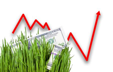 dollar bills: 100 dollar bills growing in the green grass. Arrow rising up
