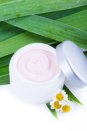 Skincare creams with camomile extract, natural organic cosmetics photo