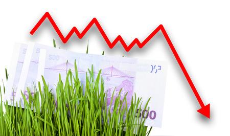 euro money: Growing Euro money cash in green grass. Arrow falling down Stock Photo