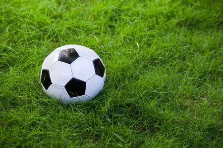 Soccer ball on green grass field closeup photo