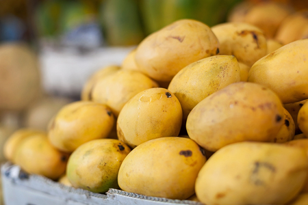 dept: Mango tropical fruit on asian market, shallow dept of field Stock Photo