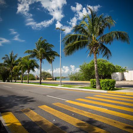 pedestrian crossing: Pedestrian crossing on tropical street road