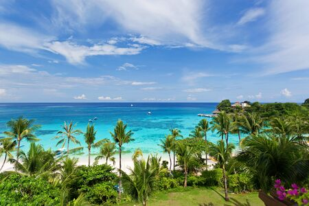 seaview: Seaview from above, tropical beach with coconut palms Stock Photo