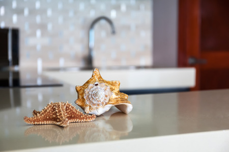 backsplash: Starfish and seashell on stone table top at modern caribbean kitchen Stock Photo
