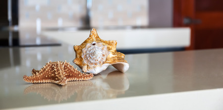 Starfish and seashell on stone table top at modern caribbean kitchen photo
