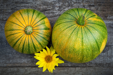 wooden table top view: Fresh pumpkins decorated  sun flower on wooden table, top view
