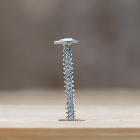 into: Screw screwed into wooden plank, closeup