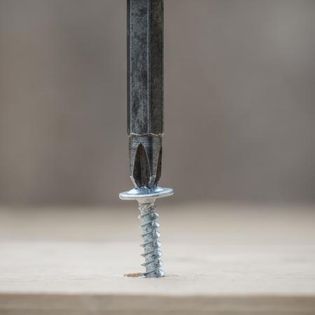 screwing: Screwing screw into wooden plank, closeup Stock Photo