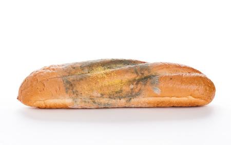 spore: Mold On Bread, closeup on white background. Nobody