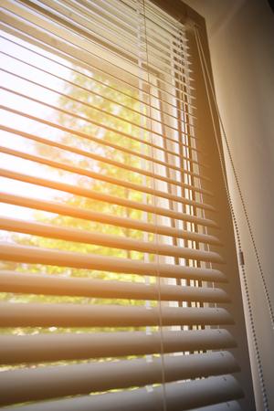 jalousie: Part of window blink, nature outside behind white open jalousie