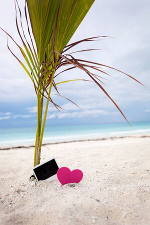 memoir: Empty photo card with heart on sandy beach near young palm tree. Memory Travel Concept Stock Photo