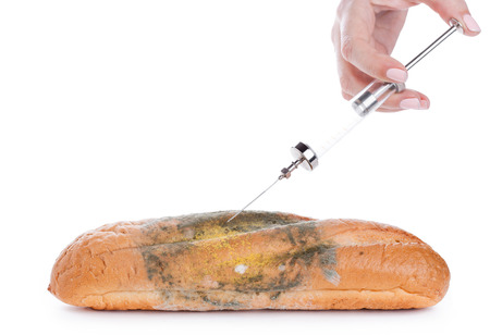 bread mold: Female hand injecting bread with green mold by syringe on white background.  Genetic modification concept